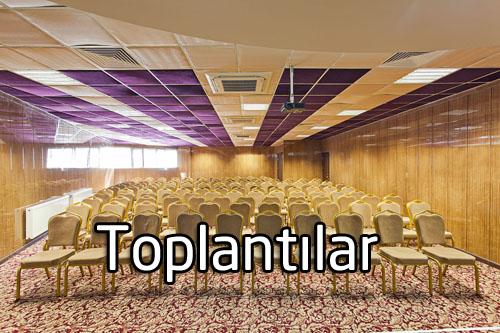 İş Toplantıları ve Konferans